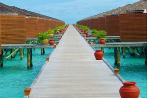 Trip to Maldives from Canada